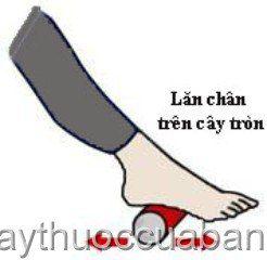 Lăn chân trên cây tròn - giảm đau gót chân