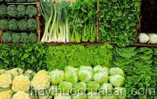 Thực phẩm chữa viêm tuyến vú